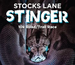 Stocks Lane Stinger