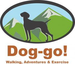 Dog Friendly Peak District Walks