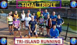Virtual Tidal Triple Series