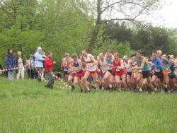 Hutton Roof Crags Fell Race