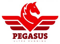 Pegasus SLAM 2022